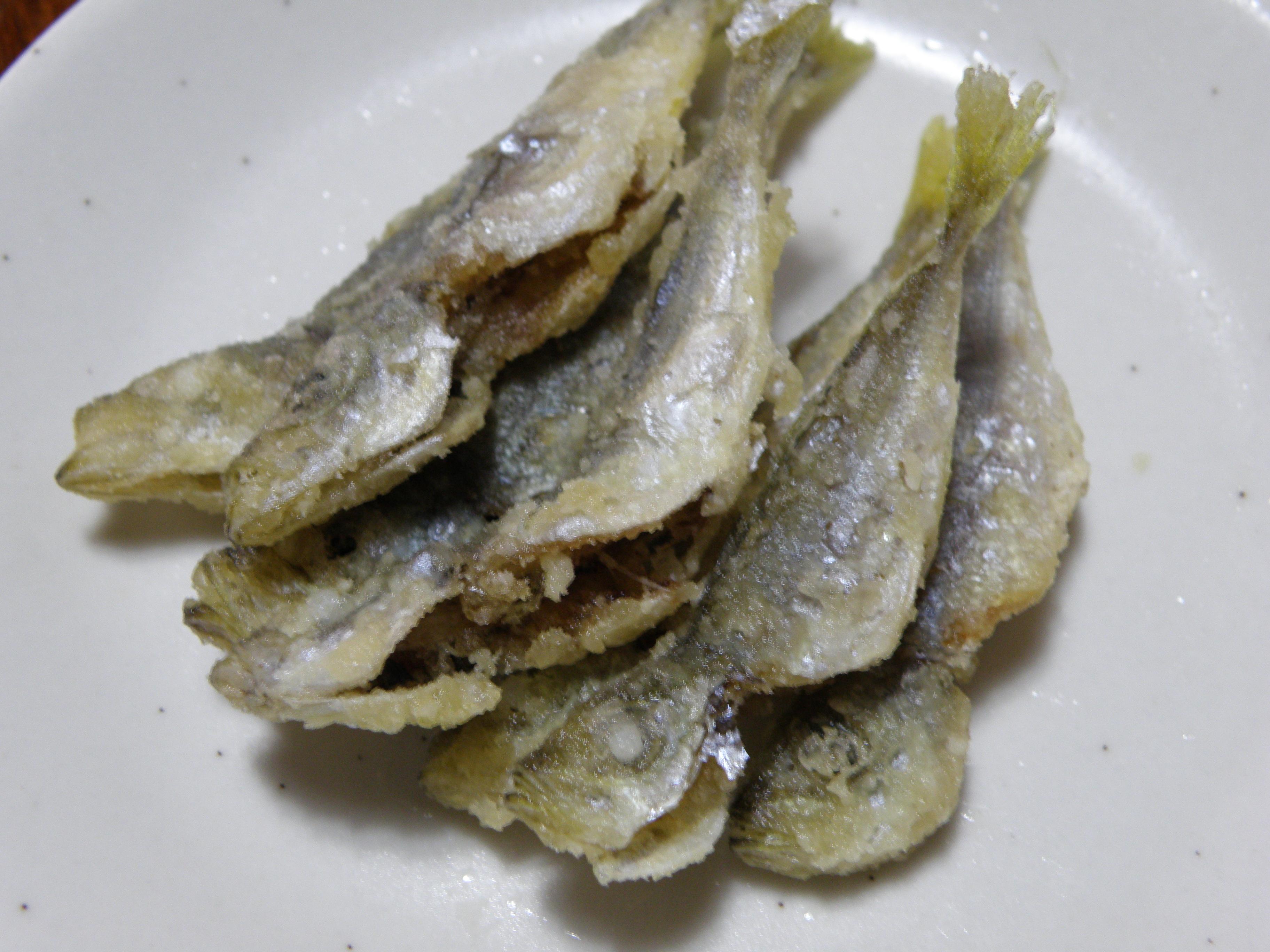 釣った魚で大宴会 アジ・イシモチをアウトドアで …